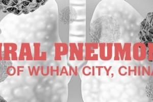 Virus Pneumonia Wuhan, Cina